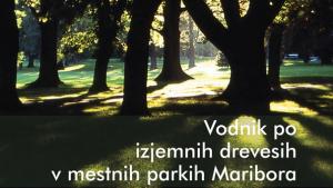 Fotografija s soncem obsijahnih debel dreves v parku in napis Vodnik po izjemnih drevesih v mestnih parkih Maribora
